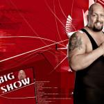 Big Show Earnings