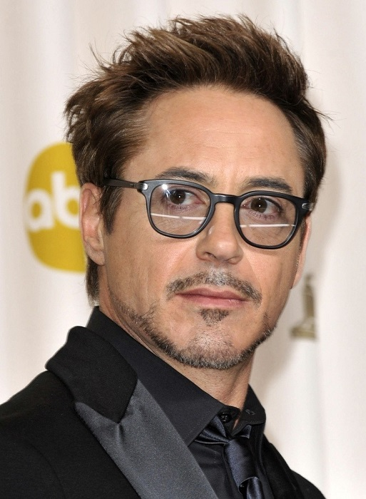 Robert Downey Income