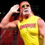 Hulk Hogan income
