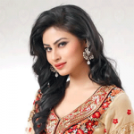 Mouni Roy Net Income